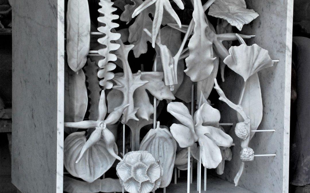 Carla Mattii e il linguaggio dei fiori